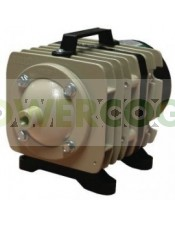 Compresor de Aire Water Master  Bomba de aire