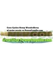 Cono Cyclon Hemp WonderBerry