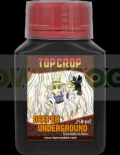 Deeper Underground (Top Crop)