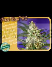 semilla feminizada Fast Bud #2 Autofloración