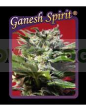 Ganesh Spirit