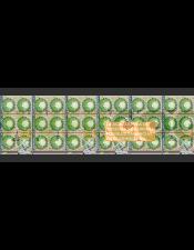 Gi Grow Noria Sistema de Cultivo 144 Plantas