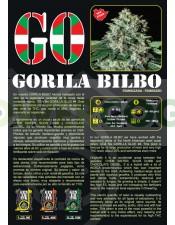 Gorila Bilbo Feminizada (Genehetik Seeds)