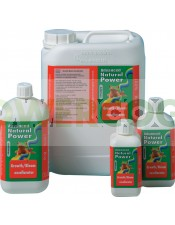 Growth-Bloom-Excellerator-Advanced-Hydroponics