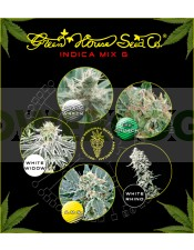 Indica Mix G (Green House Seeds)