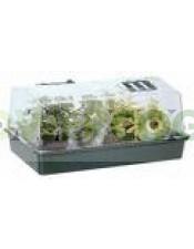 Propagador-Invernadero 38 x 24 x 19 cm Cultivo Cannabis