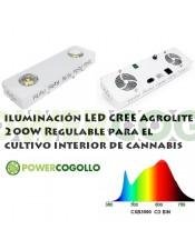 LED CREE Agrolite 200W Regulable