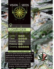 Lowryder Auto Vision Seeds