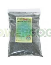 Abono Nutrihemp de Trabe para tu cultivo de cannabis