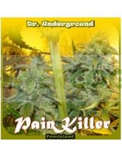 Painkiller (Dr. Underground Seeds) Semilla Feminizada Cannabis - Marihuana