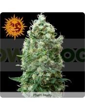 Phatt Fruity (Barney´s Farm Seeds)