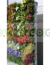 Jardín Vertical Pixel Garden