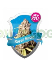 Royal Medic CBD Feminizada (Royal Queen Seeds)
