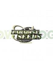 Sativa Champions Pack (Paradise Seeds)
