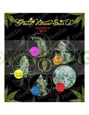 Sativa mix (Green House Seeds) 1 SUPER SILVER HAZE + 1 ARJAN'S STRAWBERRY HAZE + 1 ARJAN'S HAZE #1 + 1 NEVILLE'S HAZE + 1 HAWAIIAN SNOW La Revolución de las semillas ha llegado : SEMILLAS FEMINIZADAS DE COLORES de Green House Seeds.  Green House Seeds pre