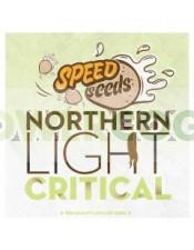 Northern Light x Critical 30 unds (Speed Seeds) Semilla Feminizada Granel Barata