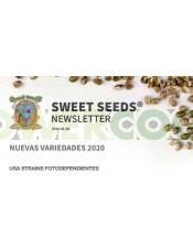 Sweet Amnesia Haze XL Auto Feminizada (Sweet Seeds)