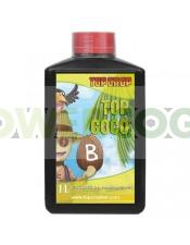 Top Coco B (Top Crop)