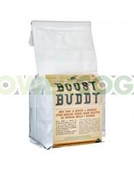 Boost Buddy Co2