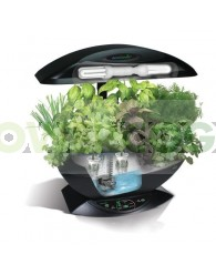 AeroGarden Negro + Kit Semillas (Mini hidro)
