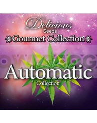 AUTOMATIC STRAINS #2 GOURMET COLLECTION (DELICIOUS SEEDS)