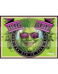 Big Bud (Advanced Nutrients)