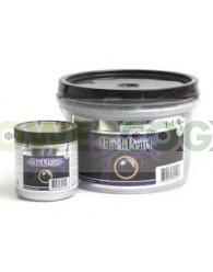 Black Pearl (Grotek)