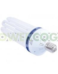 Kit Agrolite 200w CFL + Reflector Stucco