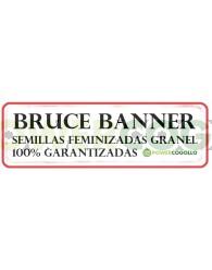 Bruce Banner Feminizada 100% Granel