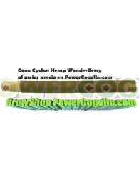 Cono Cyclon Hemp WonderBerry