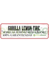 Gorilla Lemon Fire Feminizada Granel