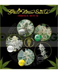 Indica Mix G (Green House Seeds)