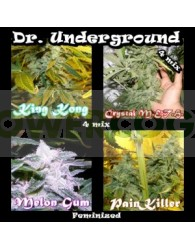 Killer Mix 8 (Dr. Underground Seeds)