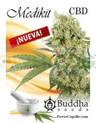 Medikit CBD Feminizada (Buddha Seeds)