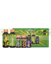 Micro Kit Ata Terra Bloombastic
