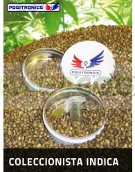 PACK COLECCION INDICA (Positronics Seeds)