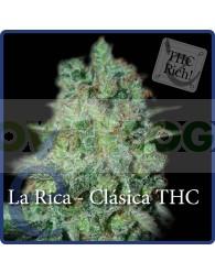 La Rica Feminizada (Elite Seeds)