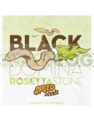 Black Domina x Rosetta Stone 30 unds (Speed Seeds)
