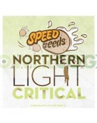 Northern Light x Critical 30 unds (Speed Seeds)