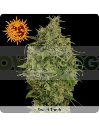 Sweet Tooth (Barney´s Farm Seeds)