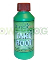 Take Root (Dutch Pro)