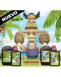 Top Coco A+B (Top Crop)