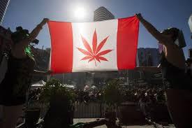 Canadá sigue los pasos de Uruguay para regular la venta de marihuana