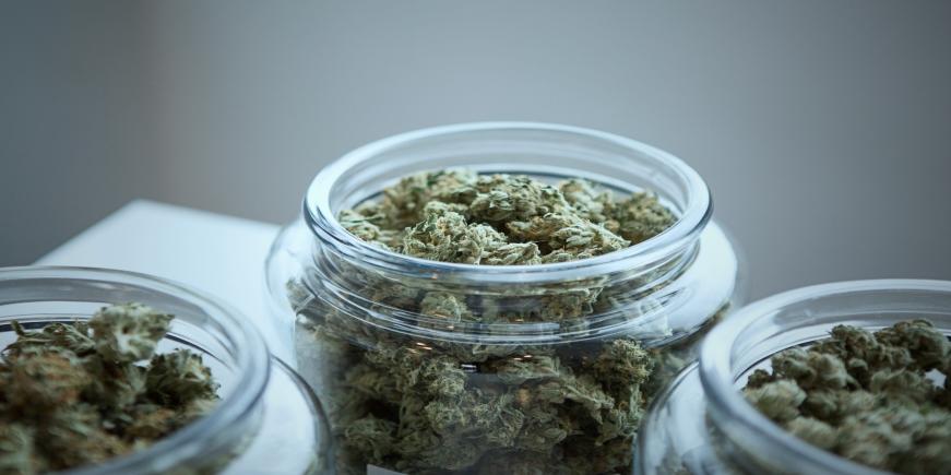 El cannabis, uno de los psicoactivos más populares del mundo