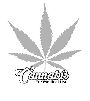El cannabis a lo largo de la historia