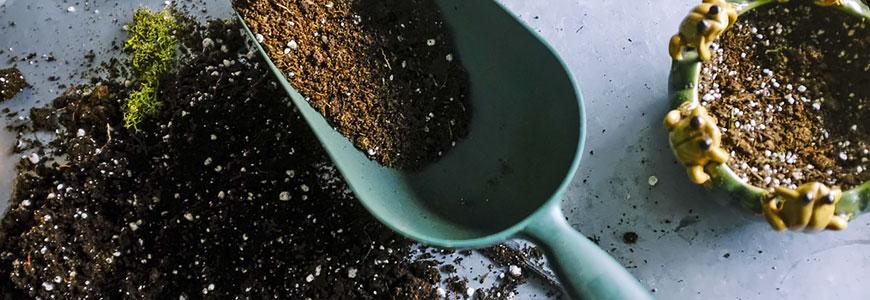 Abonos y fertilizantes para el cultivo de marihuana