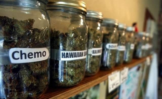 Dispensario marihuana Medicinal