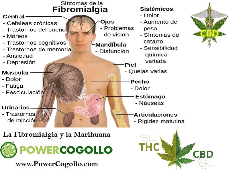 La Fibromialgia y la Marihuana