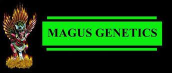 Magus Genetics