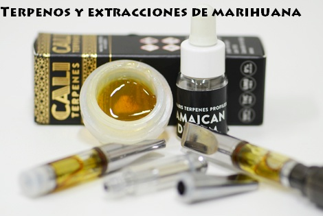 Terpenos de marihuana